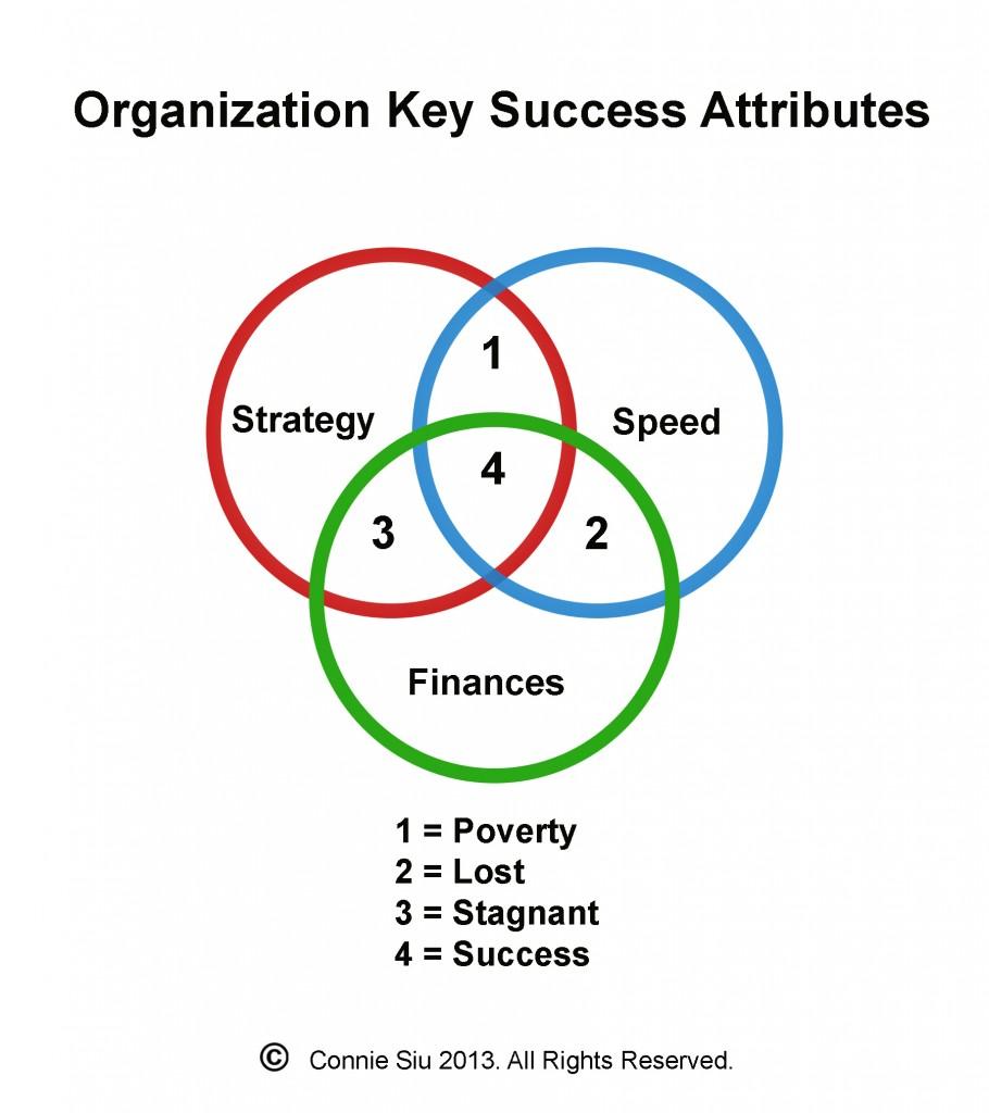 Sui-130517-Q7-organization-key-success-attributes